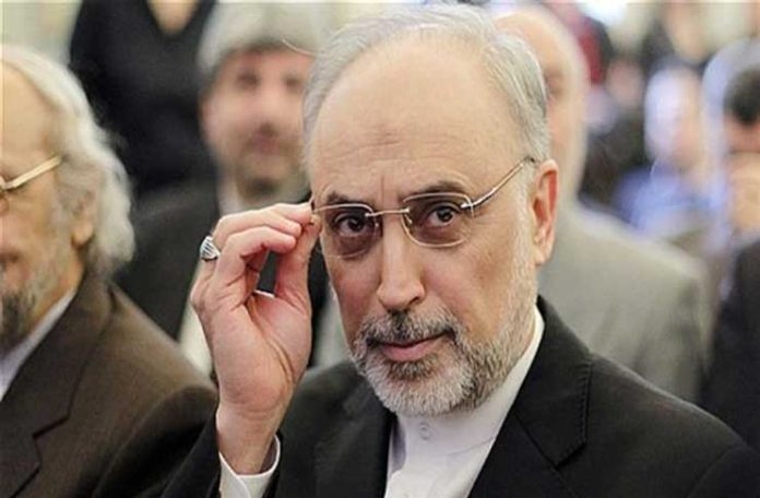 Ali Akbar Salehi, the head of the Atomic Energy Organization of Iran